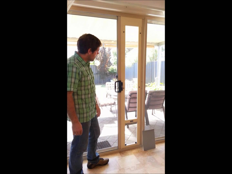 Cat Door For Sliding Screen DoorsCat Door For Sliding Screen Doors